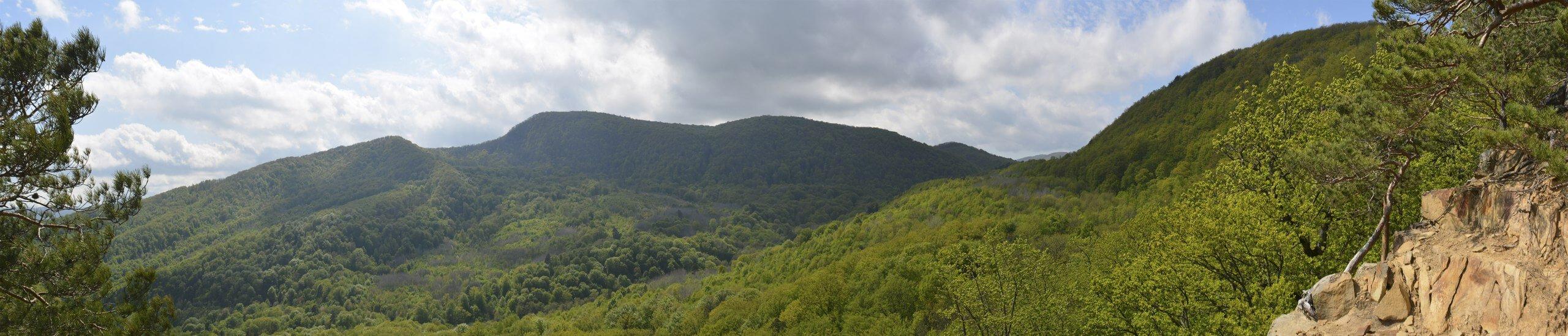 Панорама с Красных скал