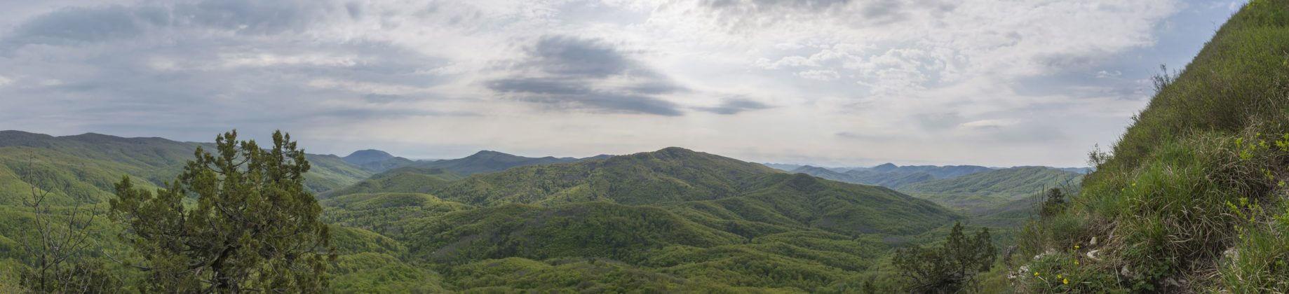 Панорама рядом с восточной вершиной горы Папай