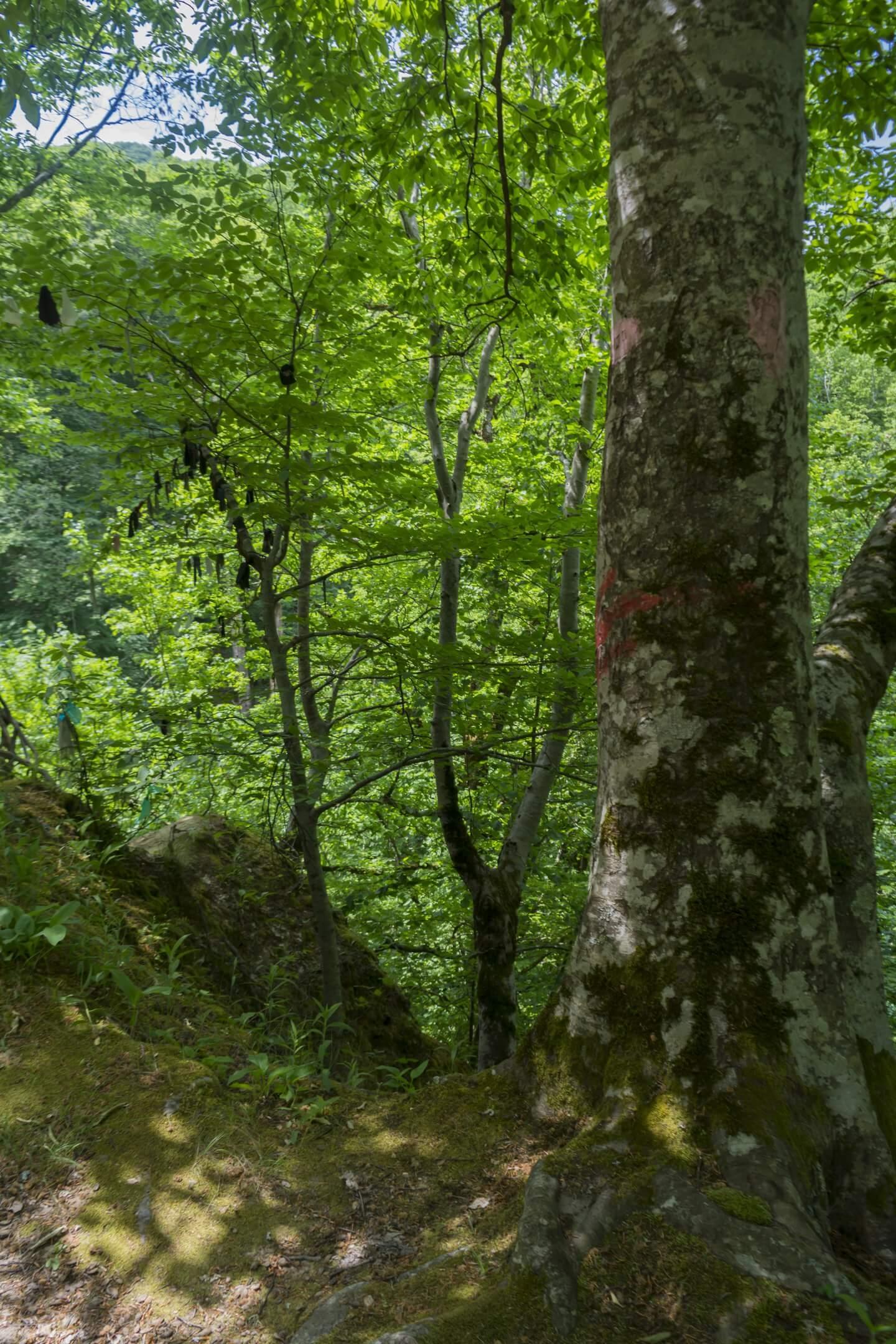 Метка в виде стрелки на верхний выход из второй пещеры