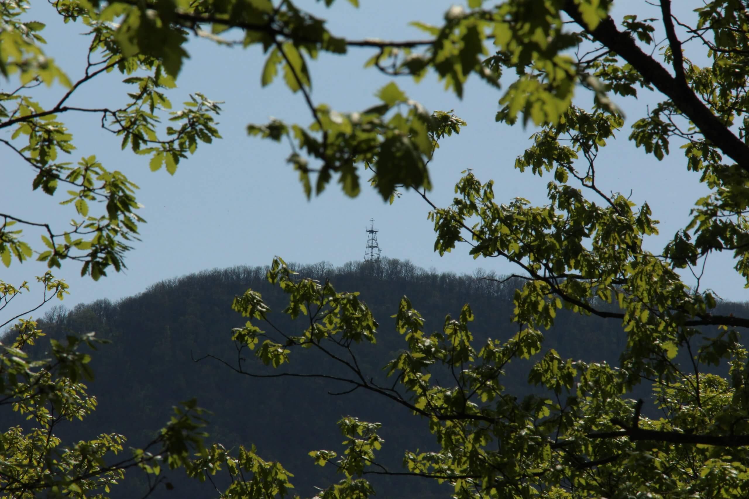 Вид на гору Собер-Баш