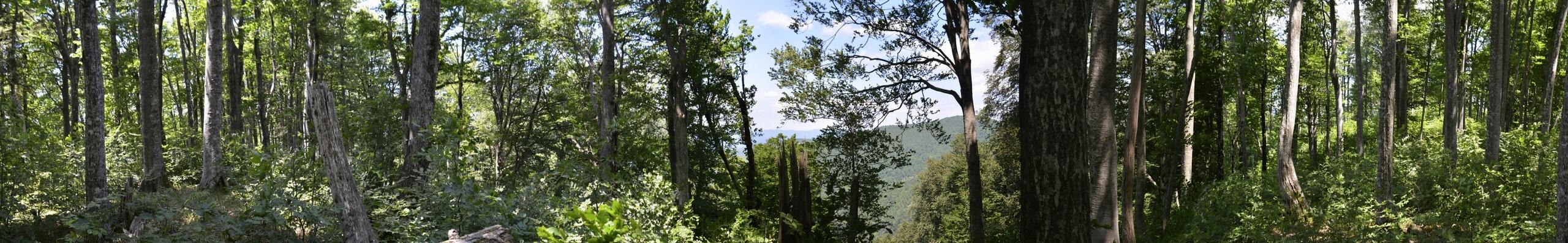 Безымянная вершина 776 метров