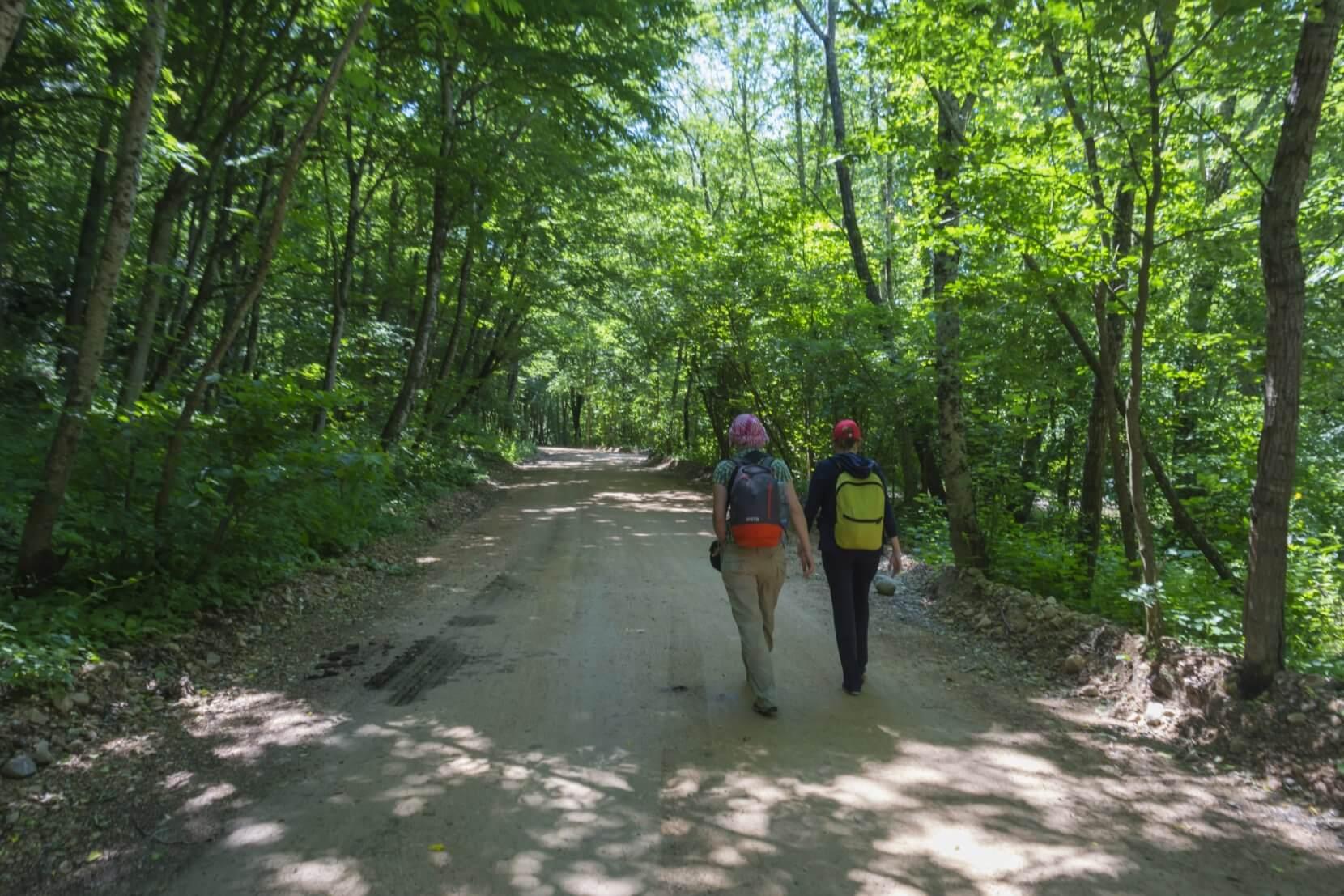 Грунтовая дорога к горе Трезубец