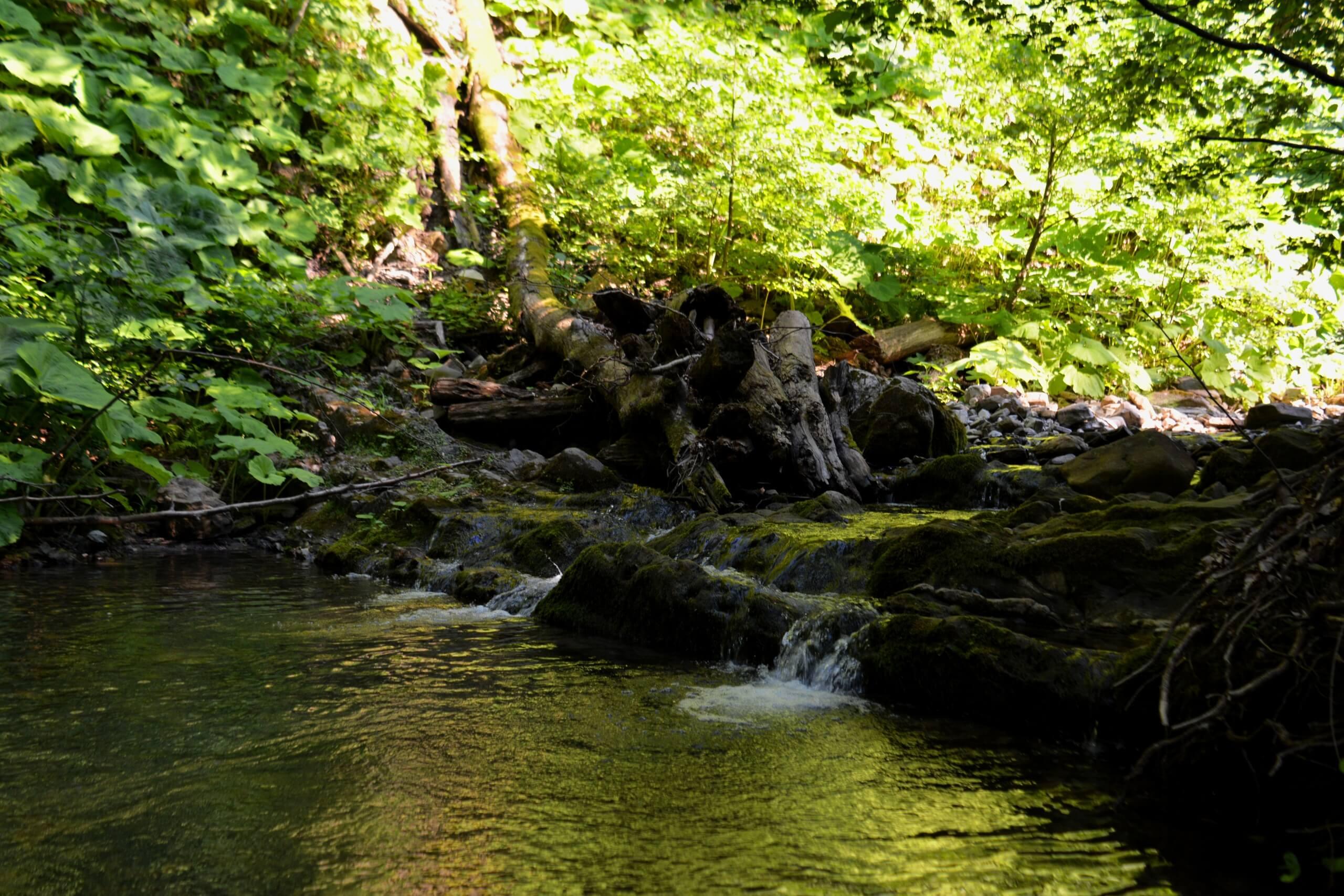Река Хакужиф