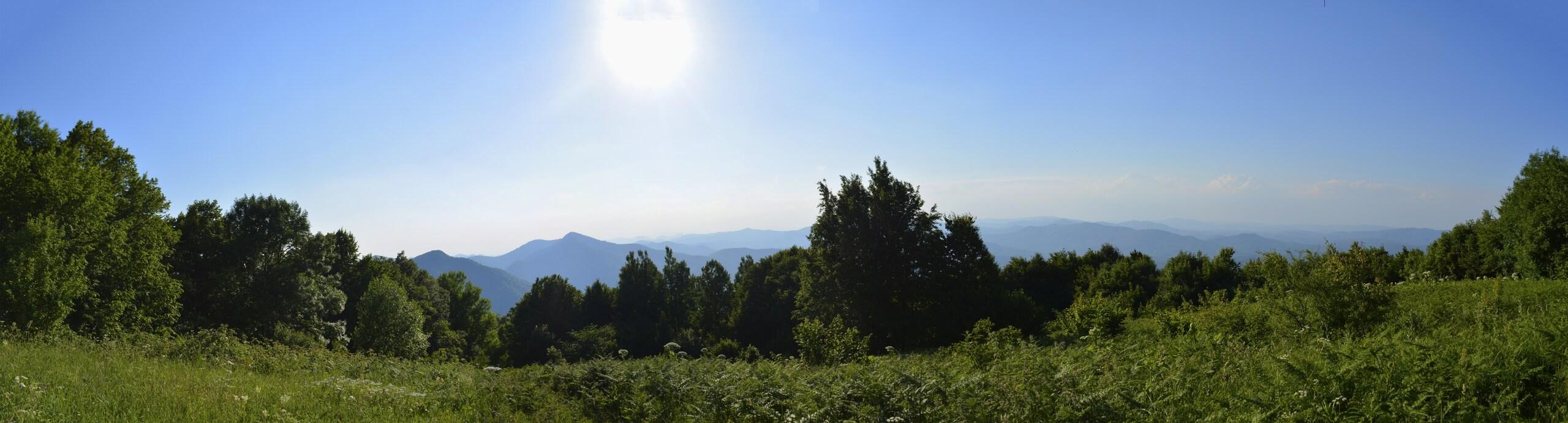 Панорама с горы Хлебушко (лето)