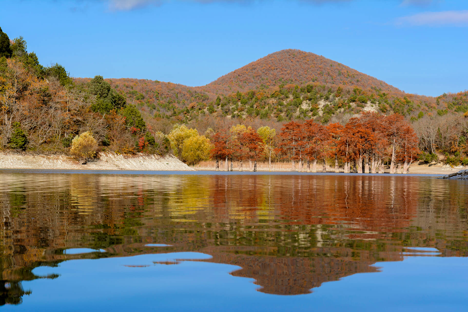 32 кипариса на озере Сукко
