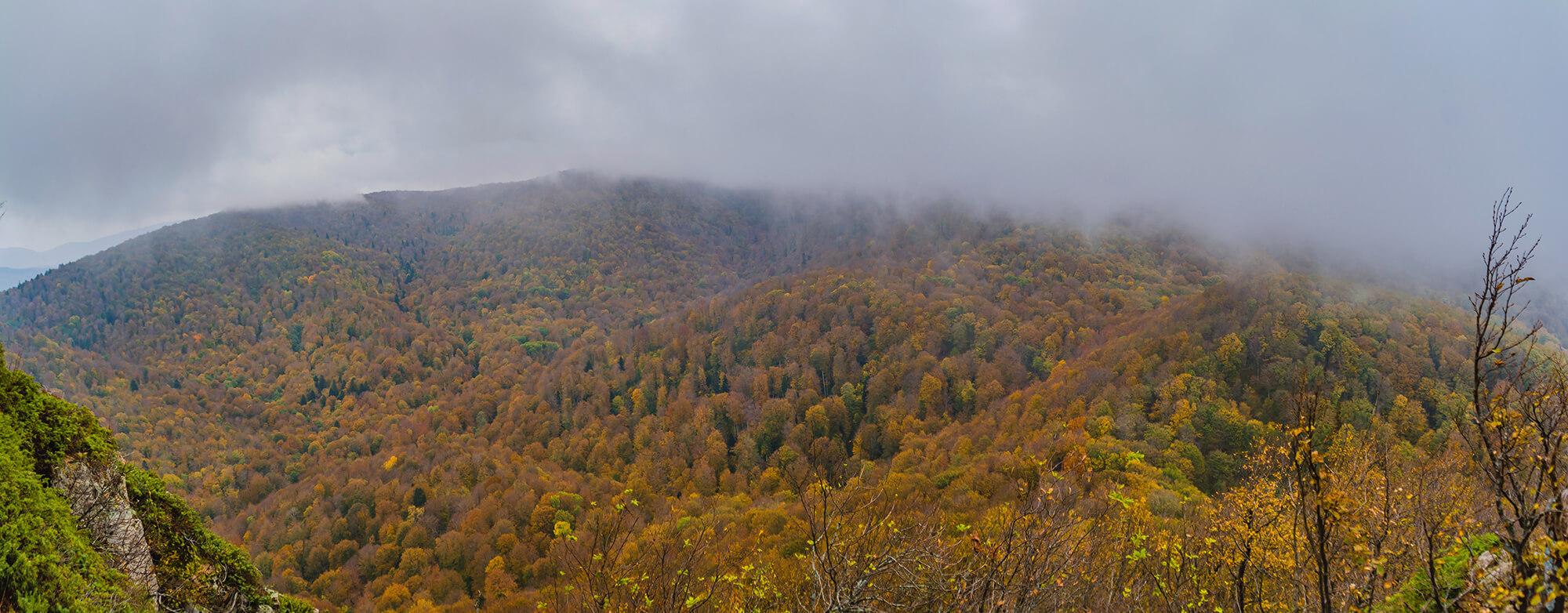 Панорама на север с горы Два Брата