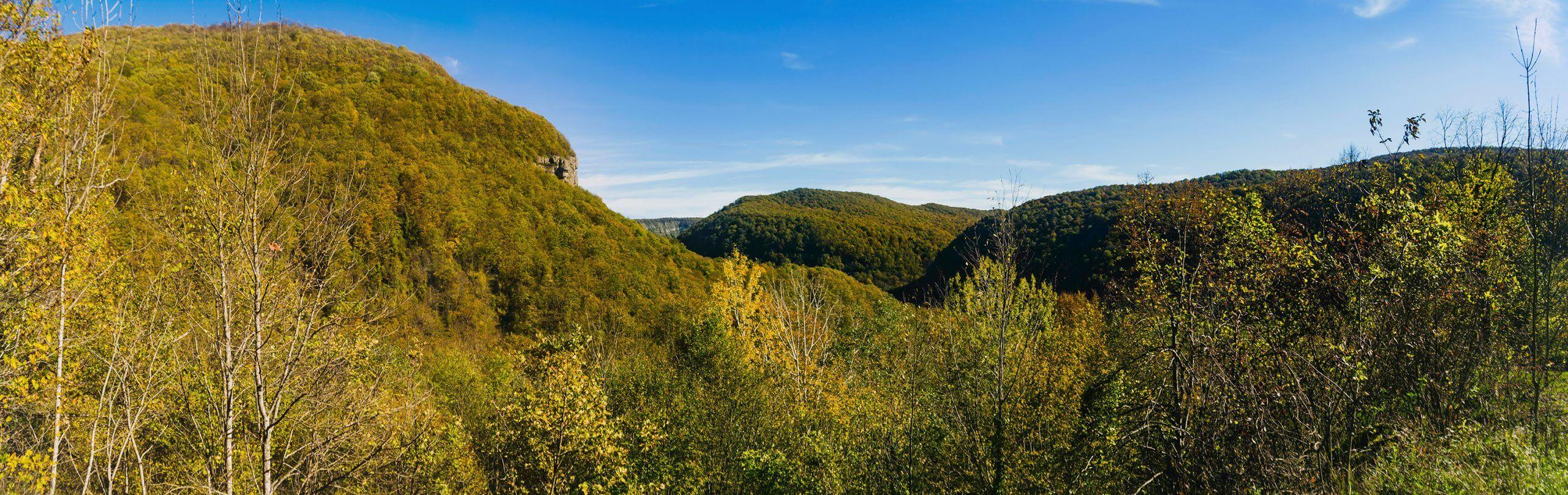Панорама на гору Нависла