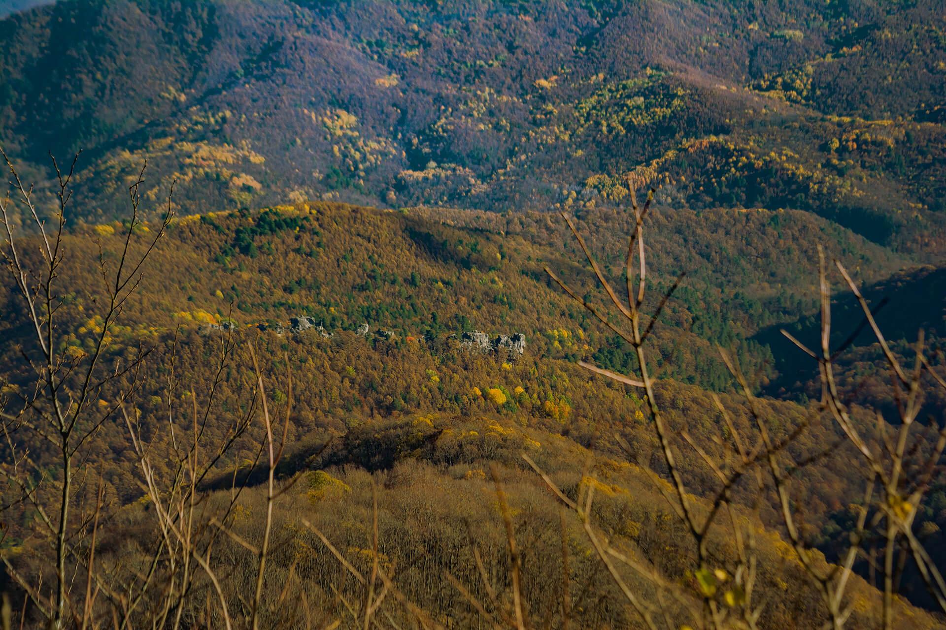 Вид на скалы Серые Монастыри