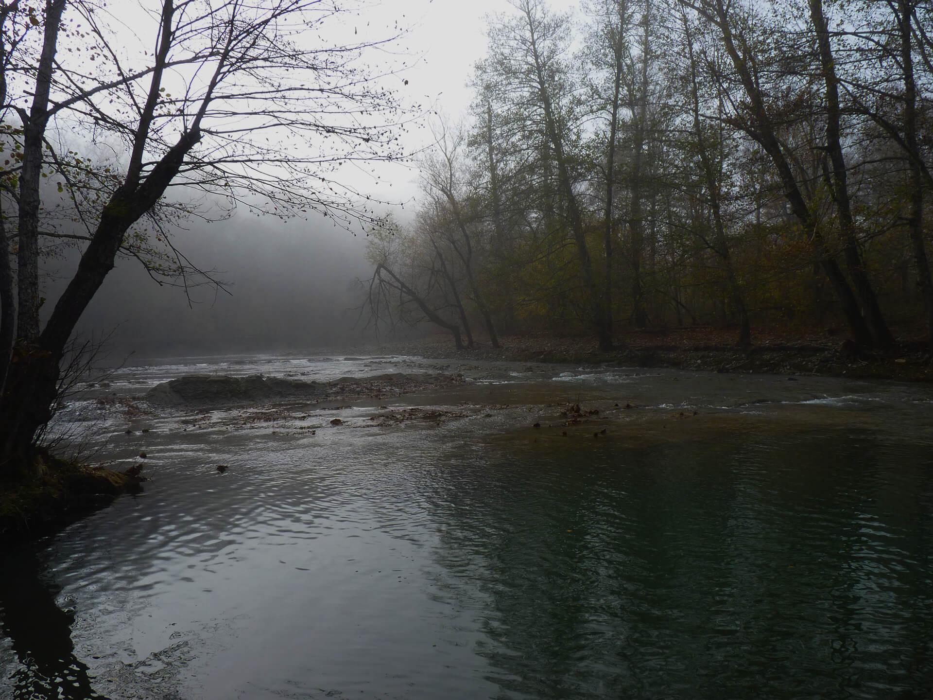 Русло реки Псекупс