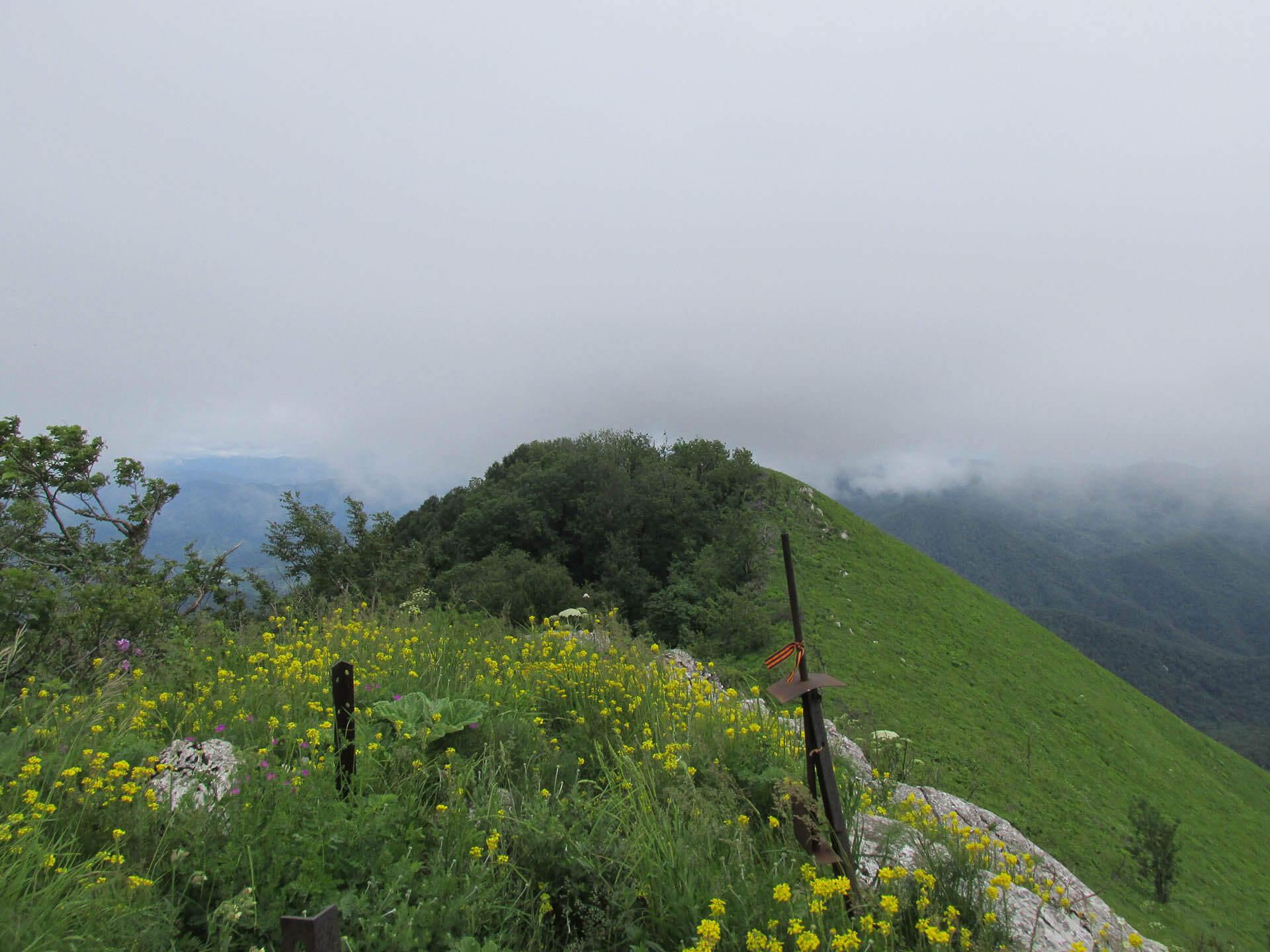 Вершина горы Большое Псеушхо (Пеус)