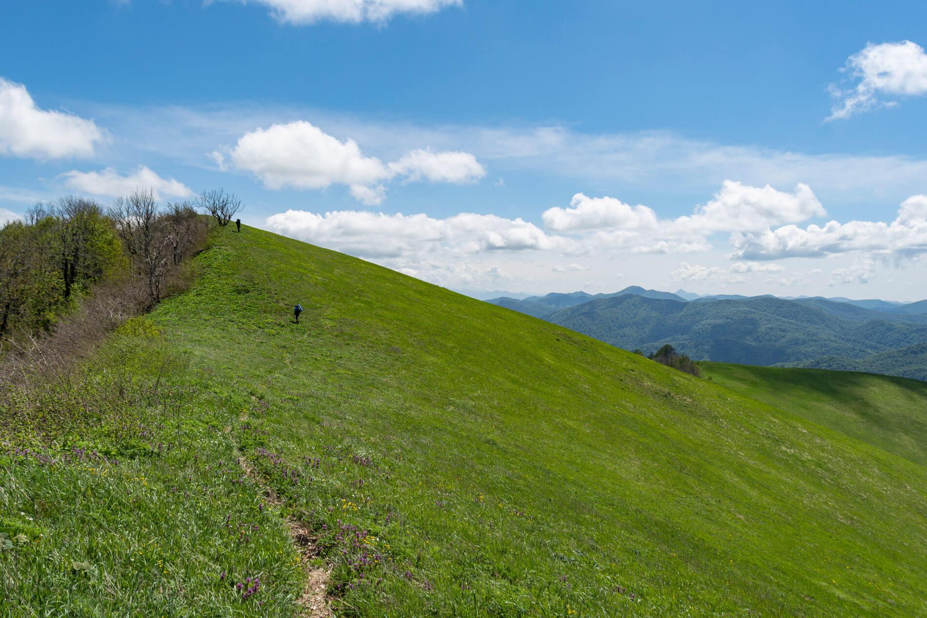 Тропа на гору Почепсуха с северо-запада
