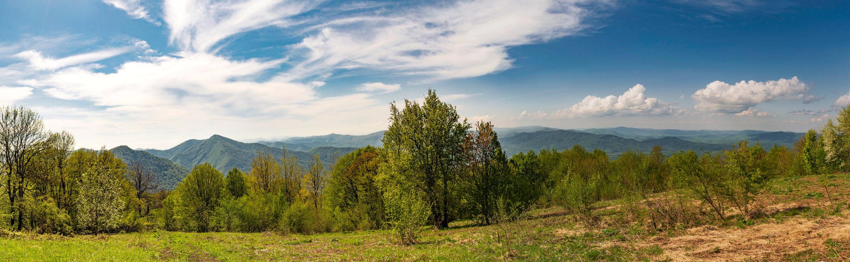 Панорама с горы Хлебушко