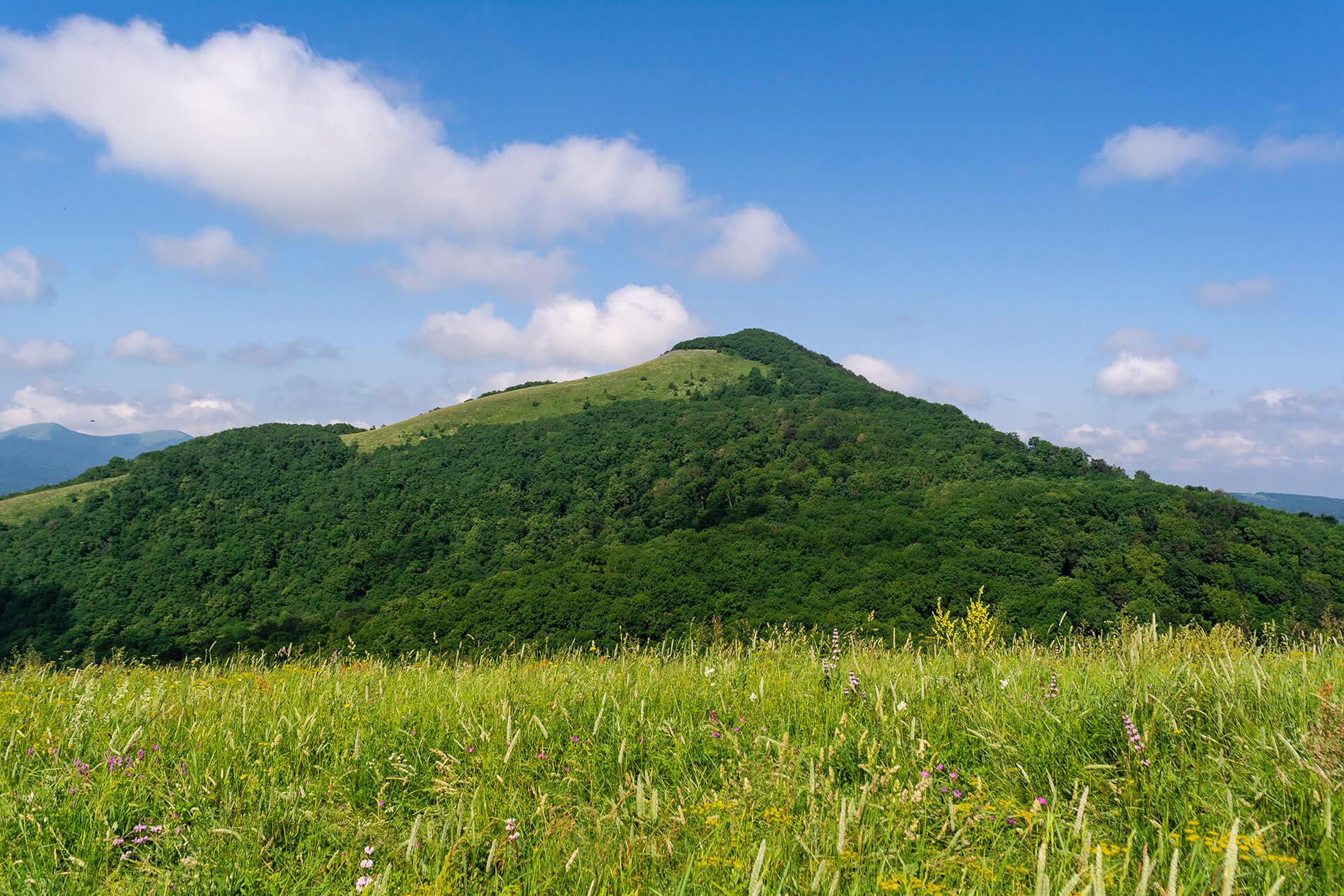 Вид на гору Свинцовая