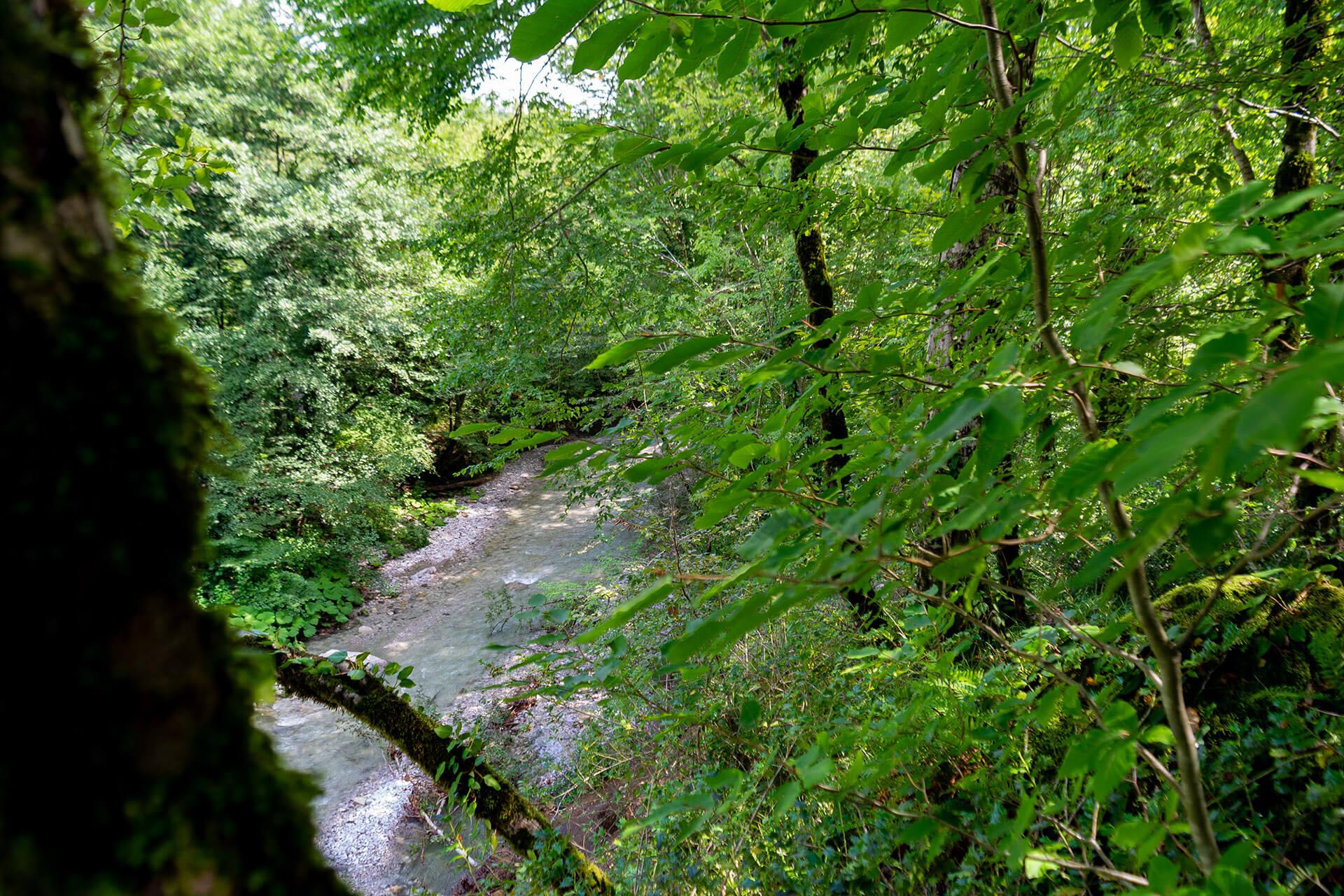 Река Букепка