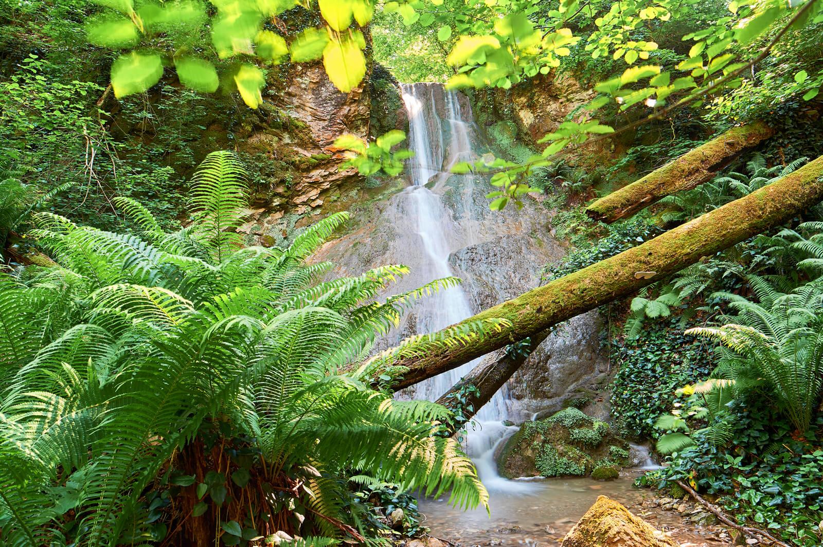 Водопад Плюшевый